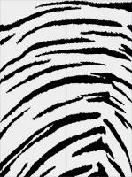 Тигровые полоски 18