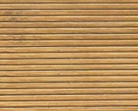 bamboo0003-42f750d239